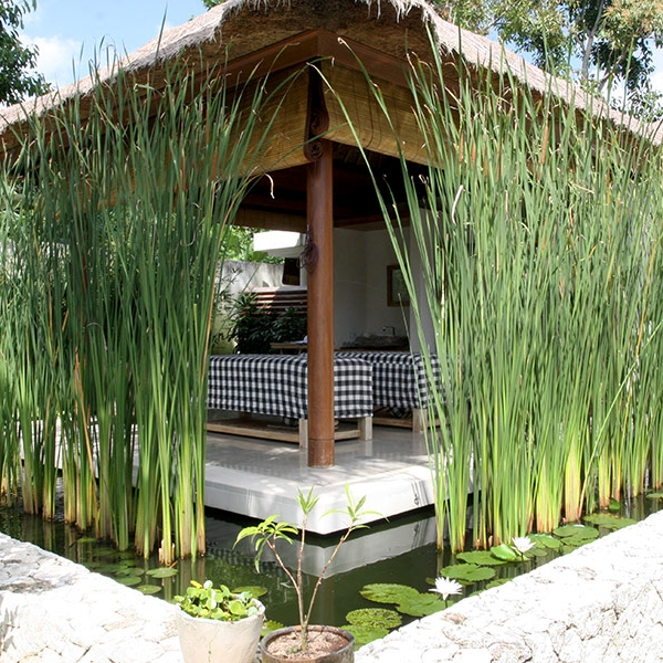 The tranquil surrounds of our day spa at Villa Pantai will help you relax